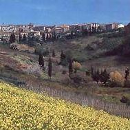 Guardistallo - Panorama